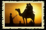 Popular Tours of India